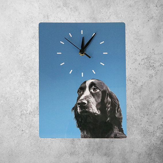 personalised wall clock with dog portrait