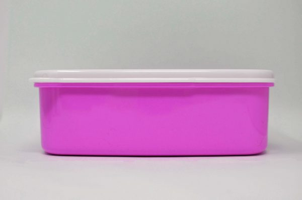 dog lunchbox in pink